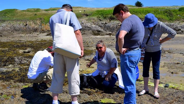 découverte des algues visite individuels Annaon Tourisme