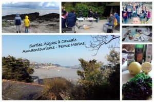 Sorties Algues Ferme Marine Cancale – Avril 2019