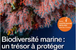 Reportage «Cap ou pas cap de goûter des algues avec Annaontourisme» – OF du 09/09/21 «La mer notre avenir», «Le p'tit journal de la mer» 7-12 ans